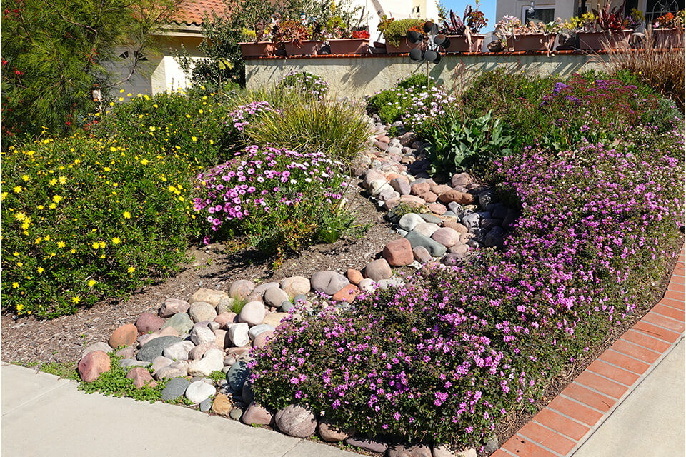 Xeriscaping allows for more colours and room for creativity.