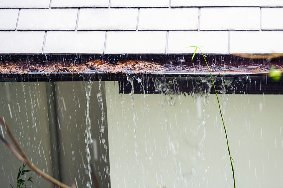 A clogged gutter may cause drainage issue.