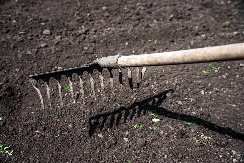 A person raking topsoil to prepare for gardening.